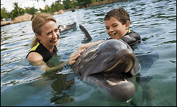 Orlando swimming with the dolphins in florida