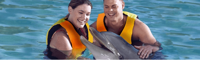 Swim with Dolphins in Mexico