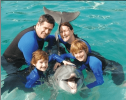 swimming with the dolphins in florida