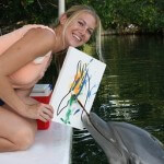 dolphin paint in the Florida Keys