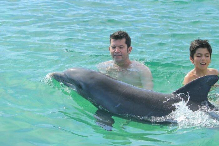 Dolphin Swim Punta Cana