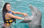 swim with the dolphins cancun