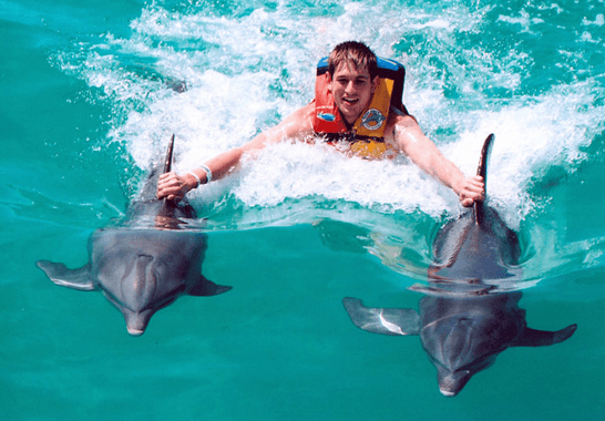 Cancun Isla Mujeres Dolphin Royal Swim