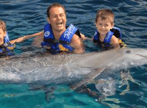 Cozumel Dolphin Programs
