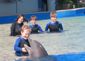dolphin encounter daytona beach and st augustine