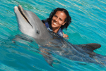 dolphin encounter oahu hawaii