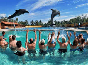 Mexico Location Dolphin Programs
