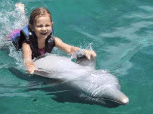 Negril Montego Bay Dolphin Swim