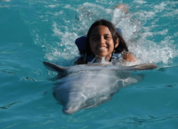 Dolphin Swim Adventure in Panama City Beach