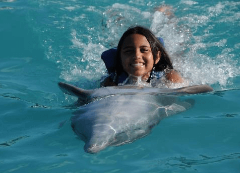 Dolphin Swim Adventure in Panama City Beach