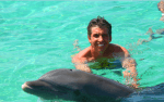 punta cana dominican republic swim with dolphins