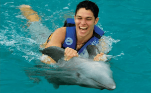 Swim with the Dolphins Cancun Isla Mujeres Dolphin Swim Adventure