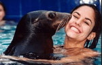 sea lion meet and greet oahu hawaii