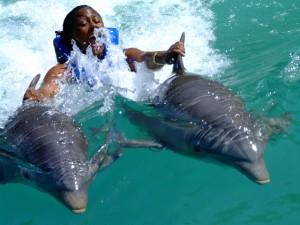 Oco Rios Dolphin Programs