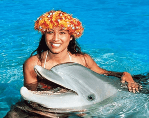 Oahu Hawaii Dolphin Programs