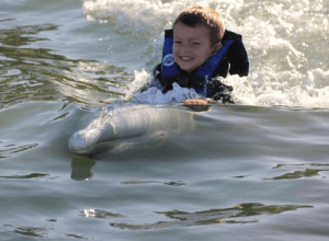 Los Cabos Dolphin Swim Adventure