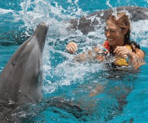 Mayan Riviera Mexico Dolphin Swim