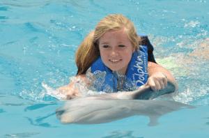 Playa Del Carmen Dolphin Swim