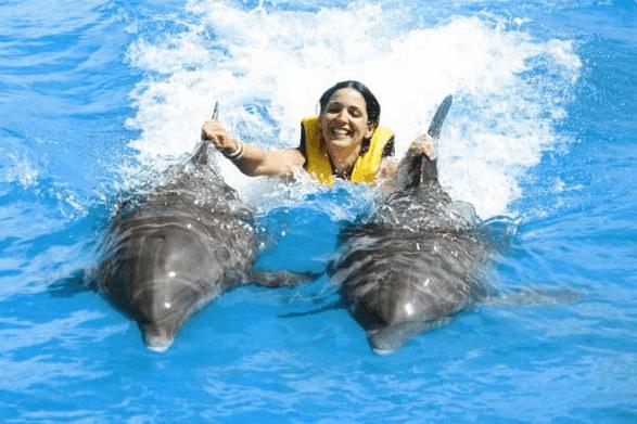 Puerto Plata Dolphin Swim