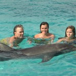 Punta Cana swimming with Dolphins