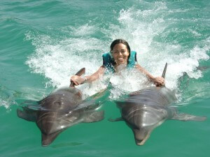 dolphin swim Puerto Plata
