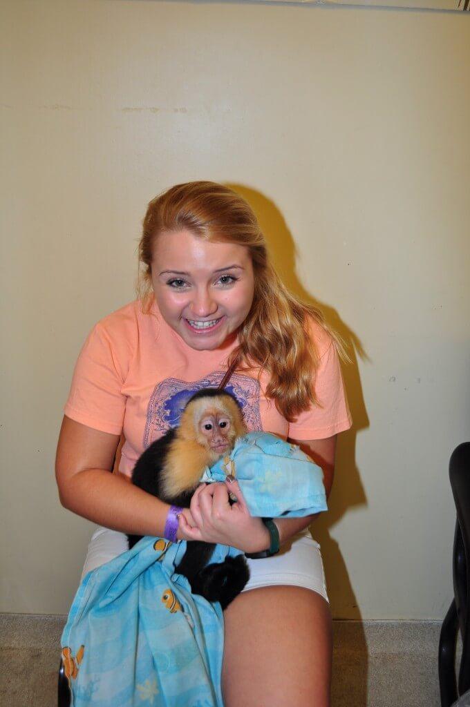 Monkey Interactions in Miami Florida