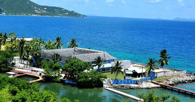 Dolphin Facility on Tortola