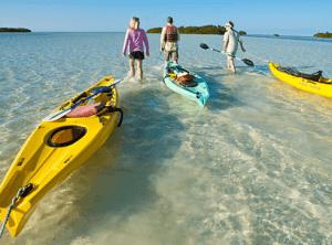 Kayak Dolphin Tour Key West