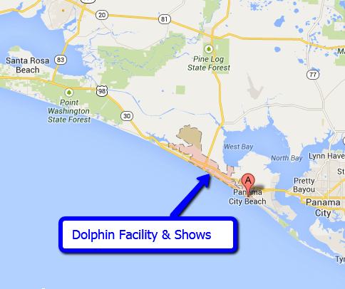 Panama City Beach Dolphin Facility