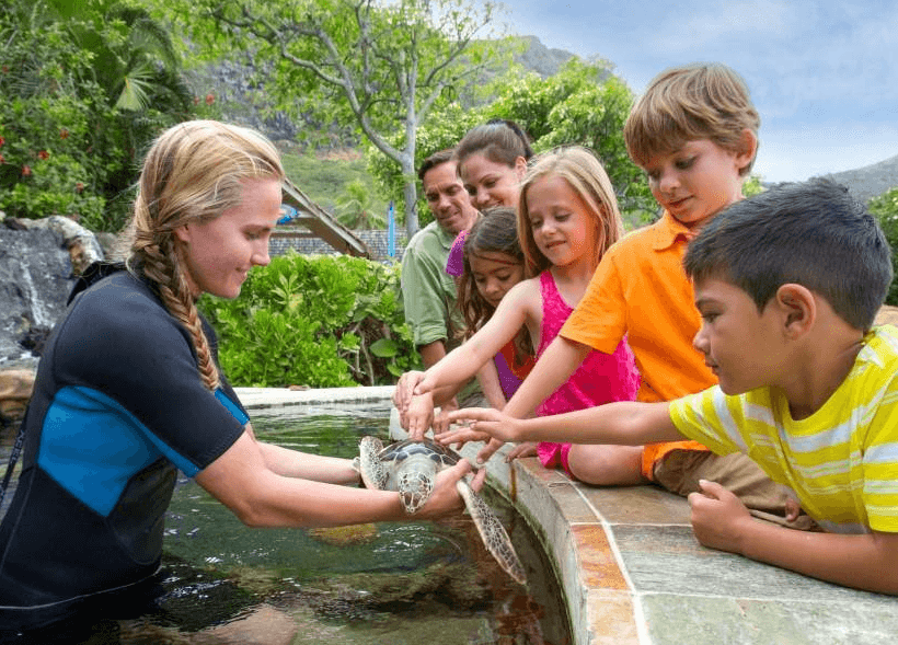 Many Hands On Animal Exhibits