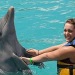 Dolphin Peck Hold in Mexico