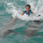 Getting speed with Dolphins Mexico