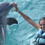 Stand Up for Dolphins Mexico