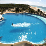 Playa Del Carmen Dolphin Royal Swim