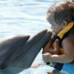 Baby Kisses Dolphin in Mexico