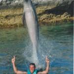 Dolphin Jumping at Blue Lagoon