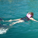 Get Ready for your Dolphin Swim Foot Push Nassau Bahamas