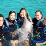 Fun Group Photos during Dolphin Swim Nassau Bahamas