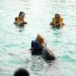 Dolphin Swim Nassau Bahamas