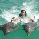 Dorsal Fin Ride Royal Swim Puerto Plata