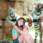 Tiger Grotto Puerto Plata