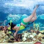 Snorkeling Puerto Plata