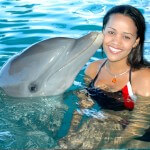 Dolphin Non-Swim Encounter Puerto Plata