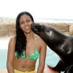 Puerto Plata Sea Lion Encounter