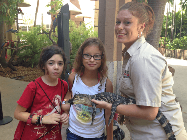Hands on Experience with Animals Miami FL