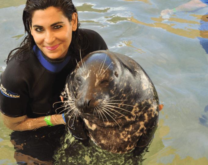 Holding Seal in Miami FL