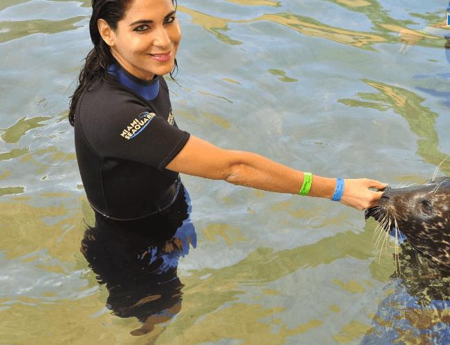 seal swim nose touch Miami FL