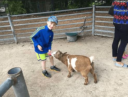 Petting Zoo Miami FL