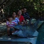 VIP Dolphin Miami
