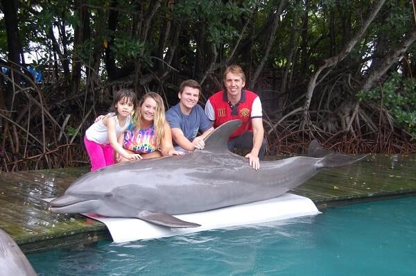 dolphin-vip